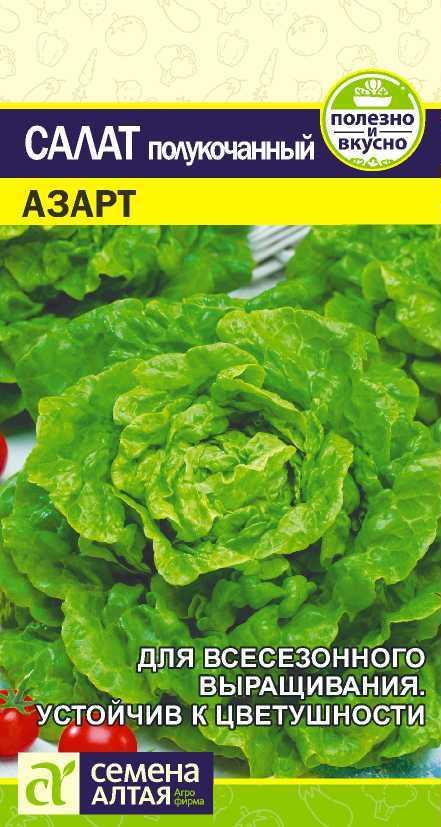 Салат азарт выращивание из семян 67