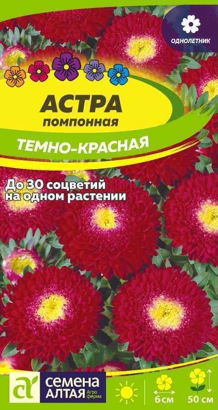 Цветы однолетние каталоги