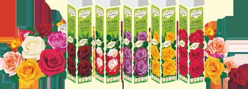 Семена Алтая саженцы роз